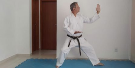 Aulas online de ginástica funcional e karatê são oferecidas às terças e quintas